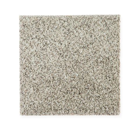 petproof maisie i color bermuda sand texture 12 ft carpet 0642d 22 12 the home depot