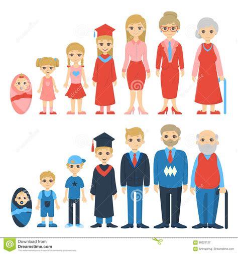 imagenes del ciclo de la vida humana ciclo de la vida ilustraci 243 n del vector imagen de adulto