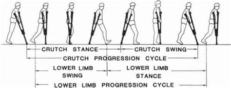 swing through fig 3 gait phases in swing through crutch gait o p