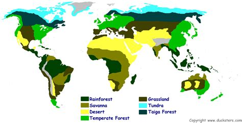 biome map science for world biomes and ecosystems