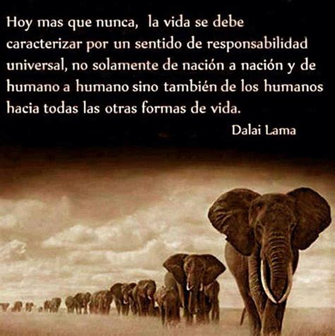imagenes de reflexion humana 17 best images about dalai lama frases humanas on
