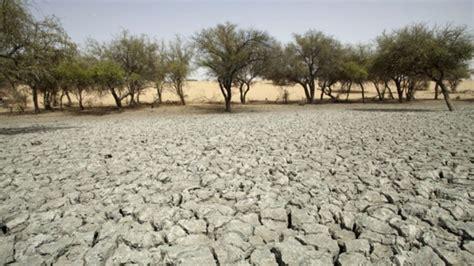fighting desertification  african  financial tribune