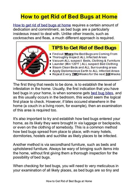 how can u get rid of bed bugs how to get rid of bed bugs at home