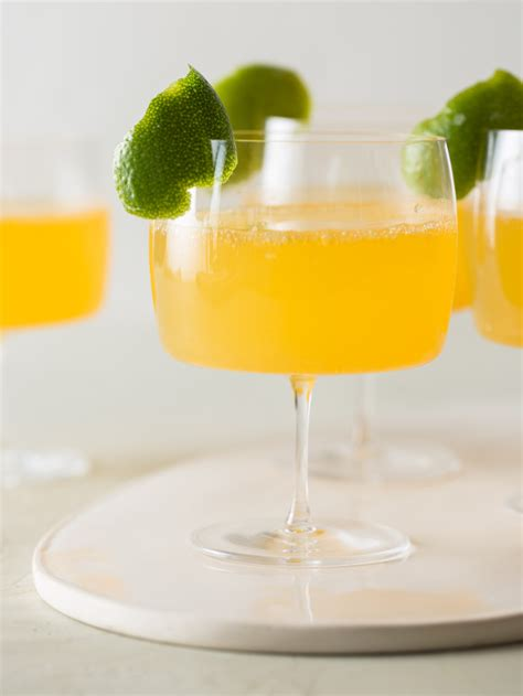 martini grapefruit citrus cocktails recipe dishmaps