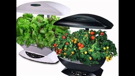 buy indoor herb garden kit youtube