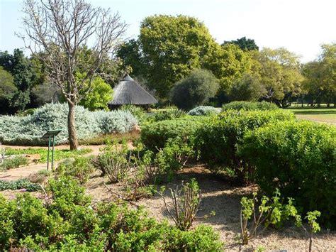 Botanical Gardens Pretoria Pretoria National Botanic Garden
