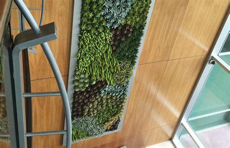 giardini verticali per interni giardini verticali per interno planeta srl catania