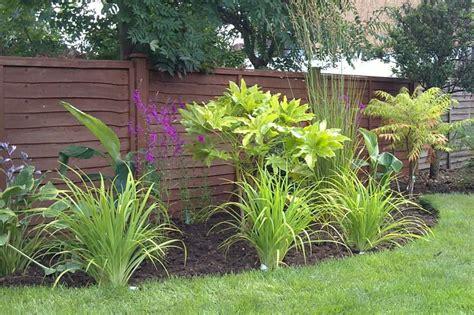 contemporary planting schemes