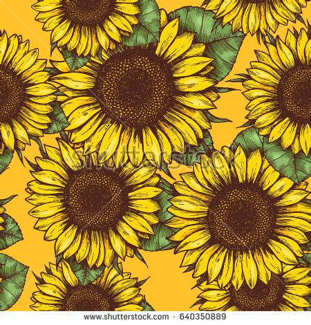 Kitchen Collection Tanger Outlet sunflower desktop wallpapers free wallpaper 28 images