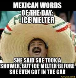 Mexican Memes Funny - 25 best ideas about mexican jokes on pinterest funny