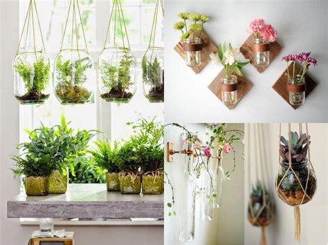 10 ideas de decoraci 243 n con plantas colgantes