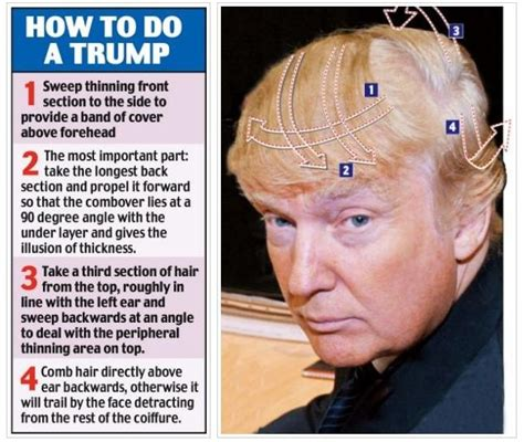 donald hair diagram the of the hair creativity in s most fantastic