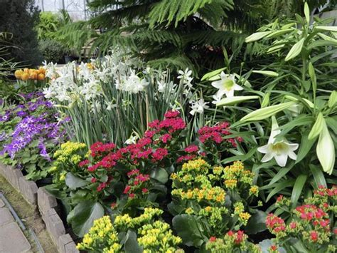 Botanical Gardens Highland Park Botanical Gardens Highland Park Lamberton Conservatory In Highland Park Picture Of Highland