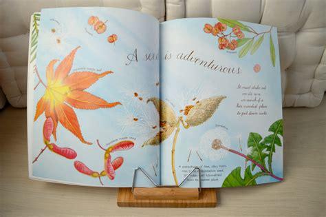 libro a rock is lively 7 colecciones de libros para estimular la curiosidad montessori en casa
