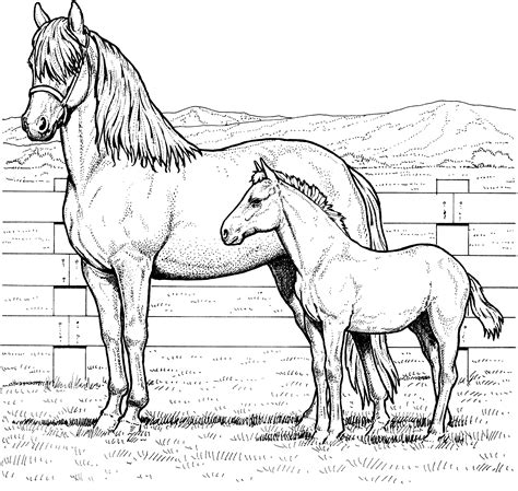 coloring pages of horses and ponies free horse coloring pages