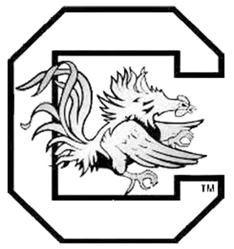 sc gamecocks free coloring pages