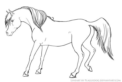 coloring pages of horses and puppies horse and dog coloring pages freecoloring4u com