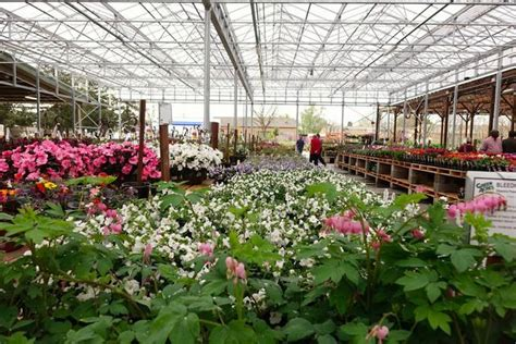 Landscape Supply Roseville Ca Seeds Green Acres Finds Fertile Ground In Elk Grove The