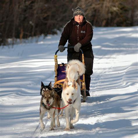 sled commands sledding