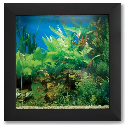 wall mounted fish tank roselawnlutheran the wall mounted aquarium hammacher schlemmer