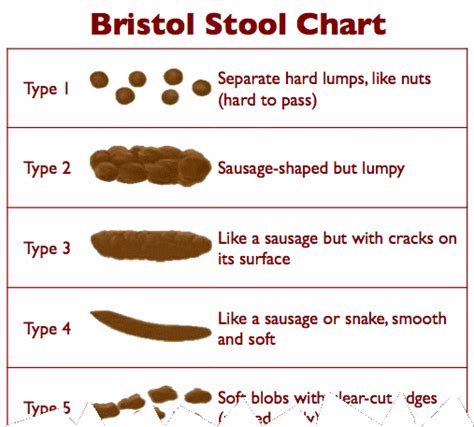 Bristol Stool Scale Pdf by Bristol Stool Scale Pdf Related Keywords Bristol Stool Scale Pdf Keywords Keywordsking