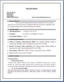 2 yr exp resume