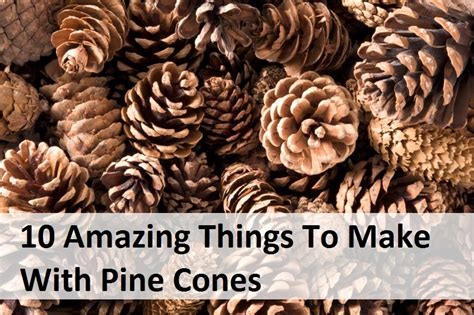 10 amazing things to make with pine cones