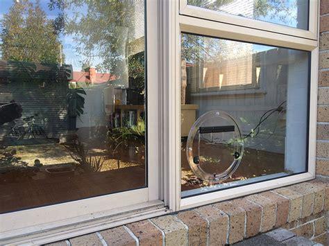 Catflap In Glass Door Doors Melbourne Affinity Glazing