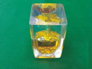 Minyak Apel Jin Daun 7 minyak apel jin master ilmu pelet dan ilmu gendam