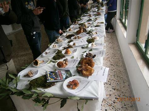 questionario sull alimentazione la siritide 24 11 2012 agricoltura ed ecosistema una