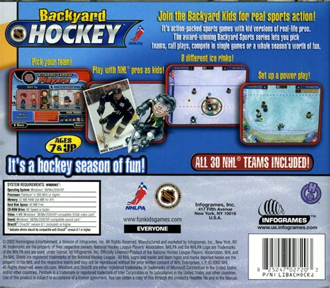 backyard hockey online backyard hockey ds rom outdoor furniture design and ideas