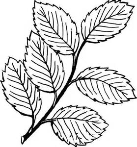 falling leaves image coloring pages bulk color