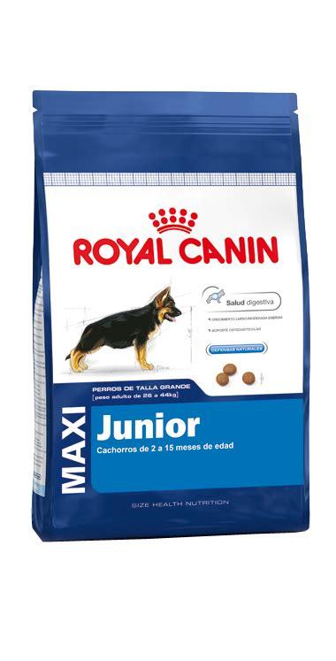 Diskon Royal Canin 15 Kg Puppy Maxi Junior royal canin maxi junior 15 kg