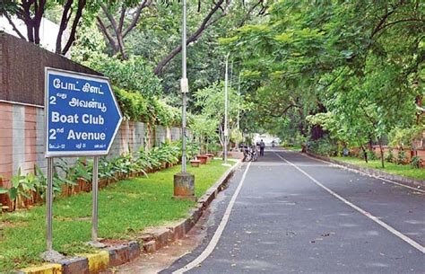 chennai boat club pictures the green green grass of boat club pavements