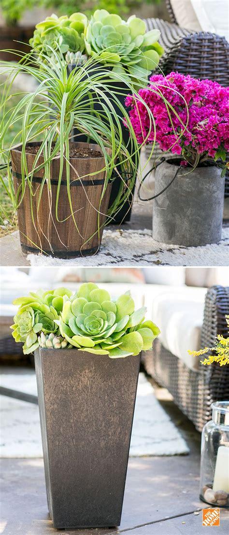 1000 images about gardening backyard ideas on pinterest