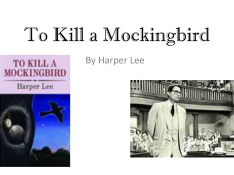 to kill a mockingbird theme essay assignment writting an essay cafsowrag for development high