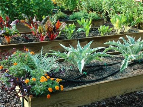 Tips For Creating Raised Bed Planters Diy Creating A Raised Bed Vegetable Garden