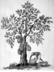 tips menggambar pohon