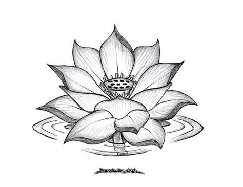 drawing of lotus flower best 25 lotus flower drawings ideas on lotus