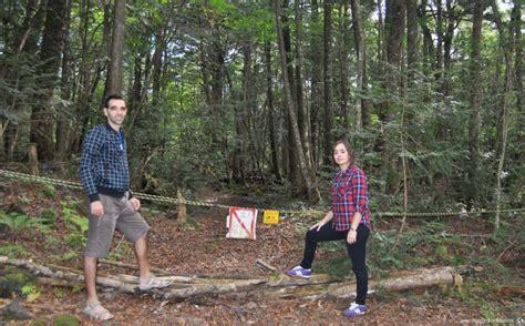 bosque aokigahara el bosque de los suicidios malditos bosque de aokigahara www pixshark com images galleries with a bite