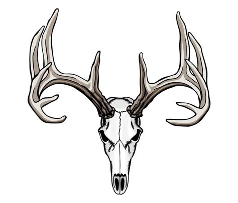 tribal deer antler tattoos 38 best tribal tattoos images on