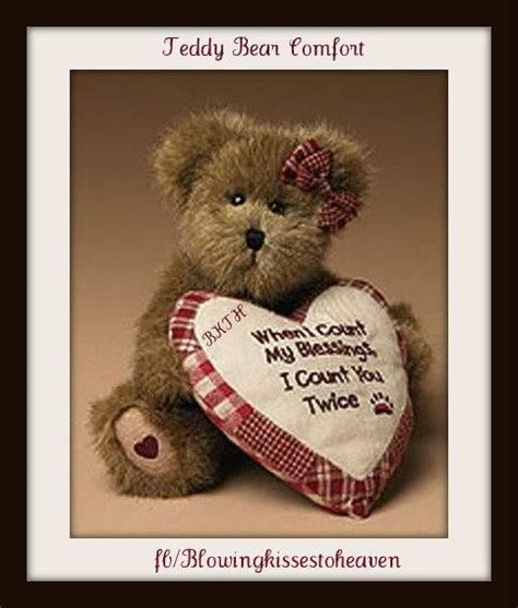comfort teddy bears the 44 best images about teddy bear comfort on pinterest