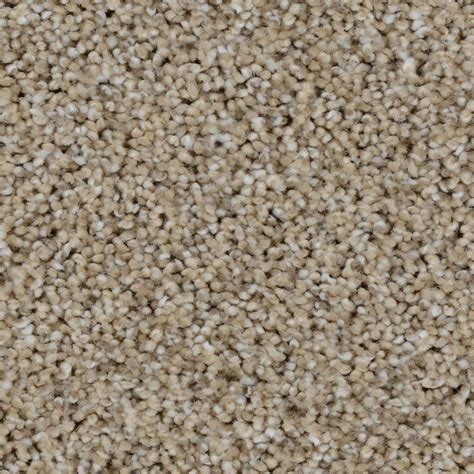 home decorators collection carpet sle trendy threads