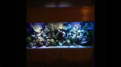 aquarium design youtube aquarium cabinet design youtube