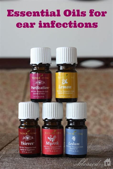 essential oils for ear infection essential oils for ear infections youngliving oilyfamilies essential oils