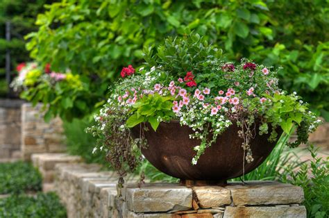 design flower containers 7 quick tips for planting in containers the english garden