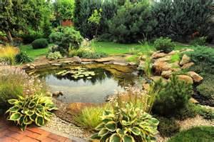 Backyard Rock Garden Backyard Pond Designs
