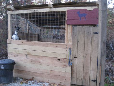 can you house train a goat 17 best ideas about pygmy goat house on pinterest goats pygmy goats and goat house