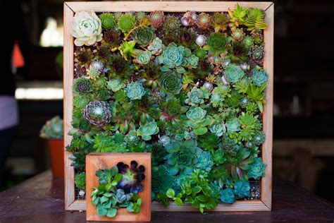 Diy Vertical Garden Indoor Craftionary
