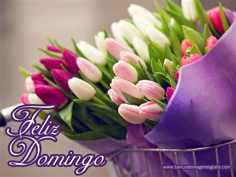 wallpaper mensajes de feliz sbado y feliz domingo con flores de banco de im 225 genes para ver disfrutar y compartir